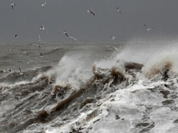 Жизнь – море…
