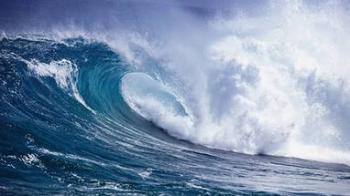 Вітер і білокрила хвиля