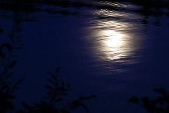 Сяйво ласкавого місяця