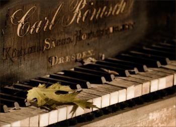 Піаністка