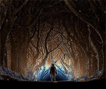В сирих деревах…