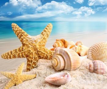Полину в мріях в купель океану