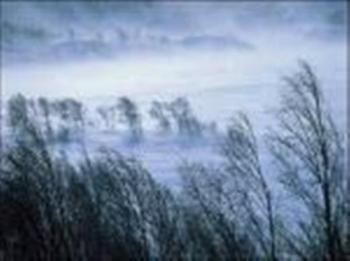 Сипле снігом безупинно