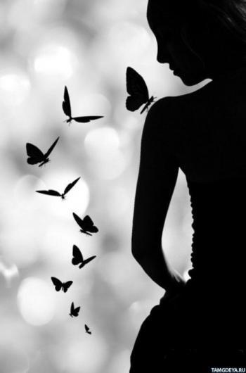 Розіп`яті метелики