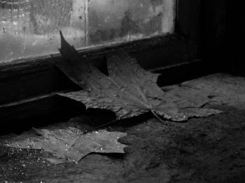 Осень. Маленькая философская поэма