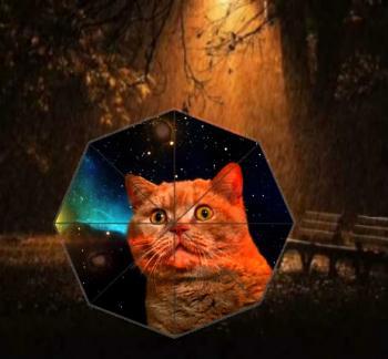 Пустунка Киця