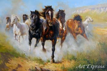 Невпокорені коні