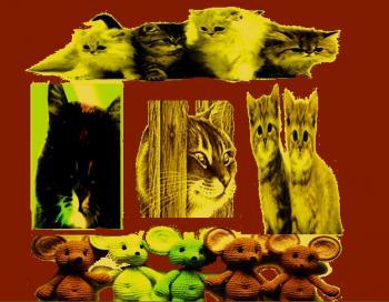 Мишенята,  Кошенята,  Кіт Василь