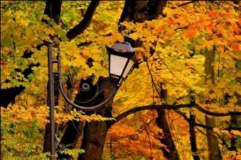 Львівська осінь