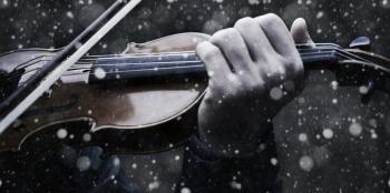 Скрипаль на розі виграє