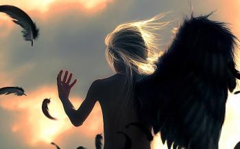 Поламані крила