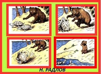 Черепахи і Ведмідь