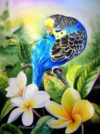 Розумна папуга