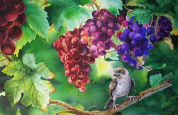 В зарослях винограда
