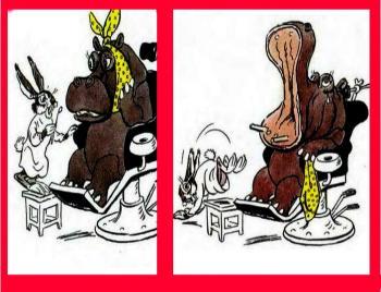 Заєць — Стоматолог