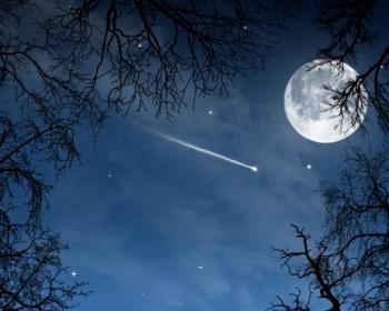...Падають зірки