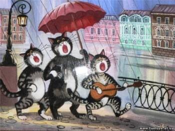 Котячий хор