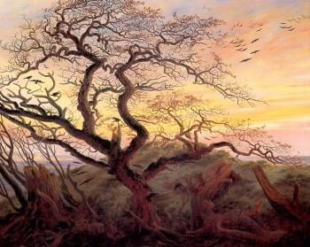 Оголене дерево