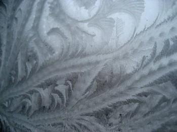 Льодяні троянди