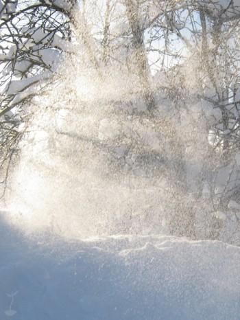 Сонця сніговії