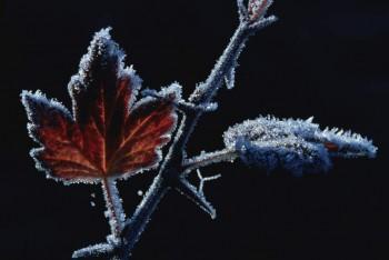 Щоб тільки осінь.....