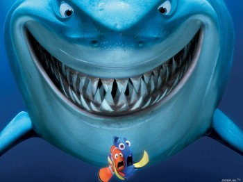 Рушим мифы о кровожадных акулах!